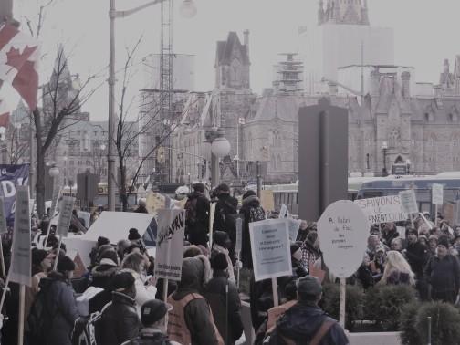 Manifestation pour exiger que le logement social et l'itinérance soient des priorités,, Ottawa, 20 novembre 2015